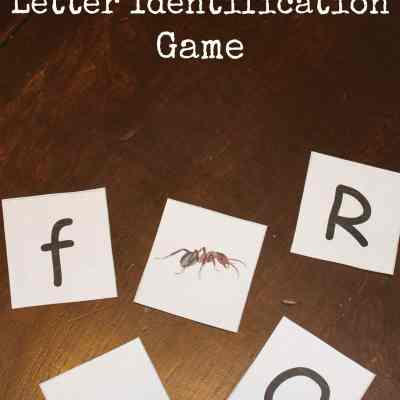 Ant Crazy Letter Identification Game
