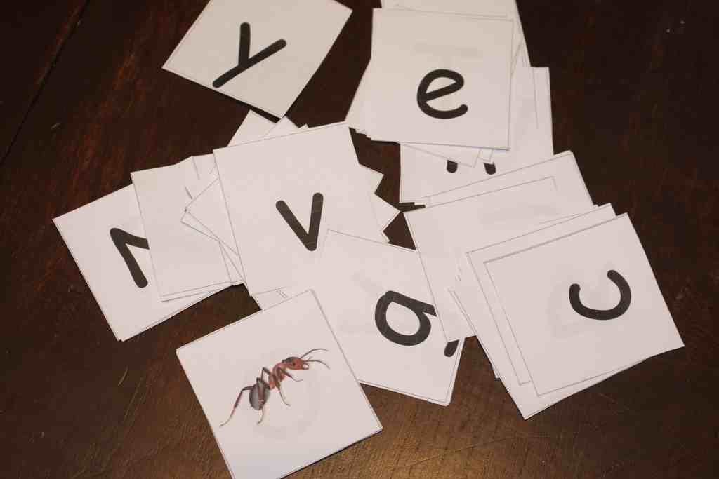 Ant Crazy Letter Identification Game, Mom Explores The Smokies