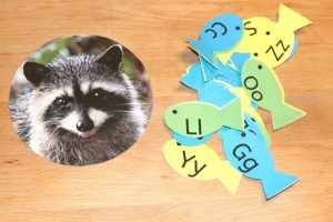 Feed The Raccoon Alphabet Activity, Mom Explores The Smokies