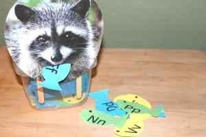 Feed The Raccoon Alphabet Activity, Mom Explores The Smokies