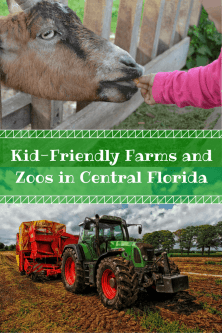 This is a great list of the farms and zoos for kids in the Orlando area!