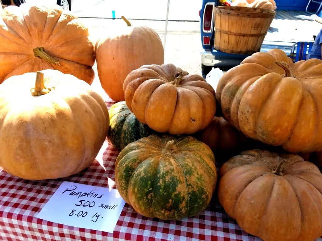 Maryville Farmers Market, Mom Explores The Smokies