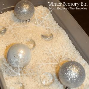 Counting Snowflakes Winter Sensory Bin, Mom Explores The Smokies