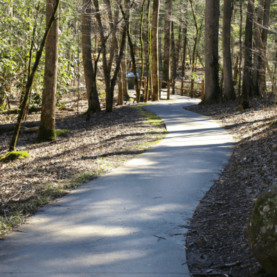 Handicap & Stroller Accessible Hiking Trail in the Smoky Mountains