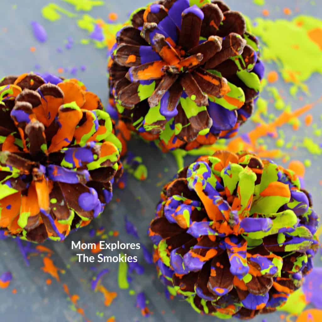 Splatter Painted Pine Cones Nature Art, Nature Craft for Kids, Mom Explores The Smokies