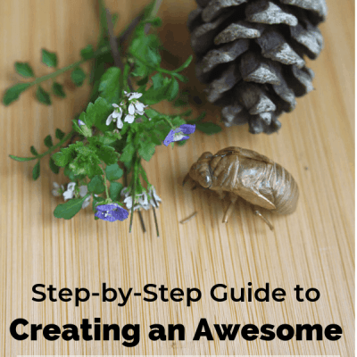 Nature Table How to with FREE Printables
