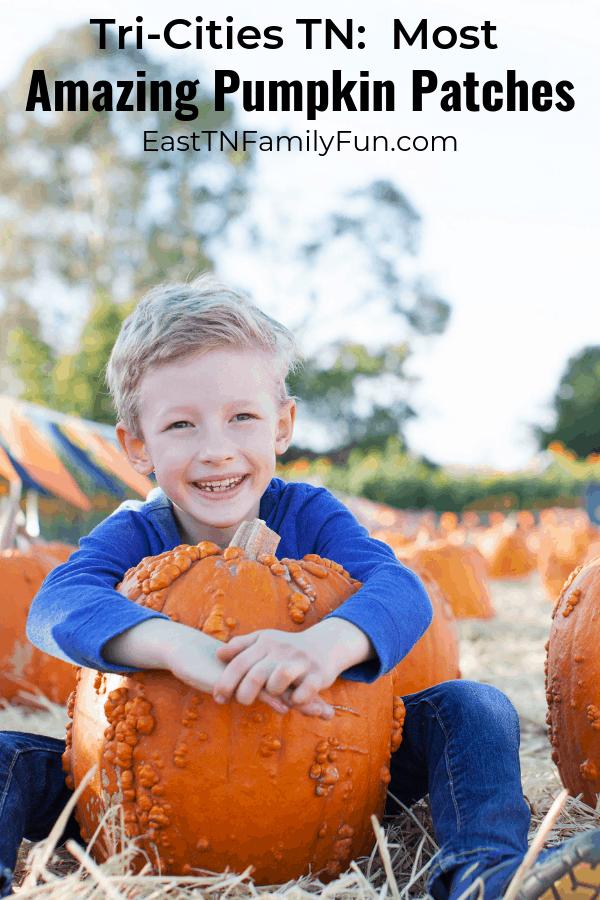 Pumpkin Patch Johnson City TN, Kingsport TN, Bristol TN, and Beyond!