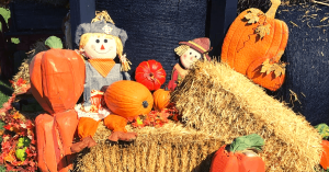 Knoxville TN Fall Festivals