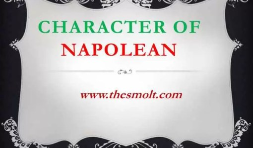 Character Sketch of napoleon in Animal farm