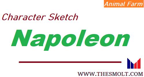 Character sketch of Napoleon