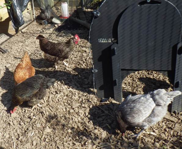 Eating together
