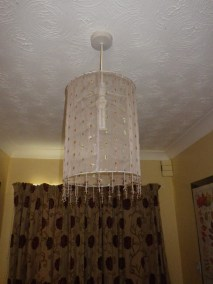 Lily's lampshade