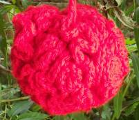 red puff 1