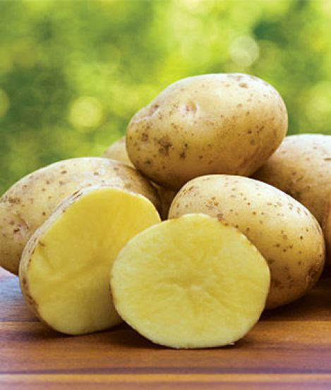 Yukon Gold potatoes (my favorite). Click here to purchase.