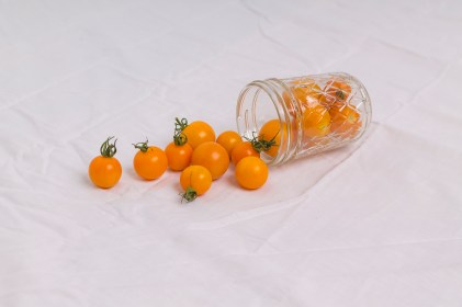 The Snarky Orange Cherry tomato. Click Here to Purchase.