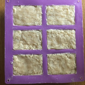 Shampoo Bars in the mould after 48 hours