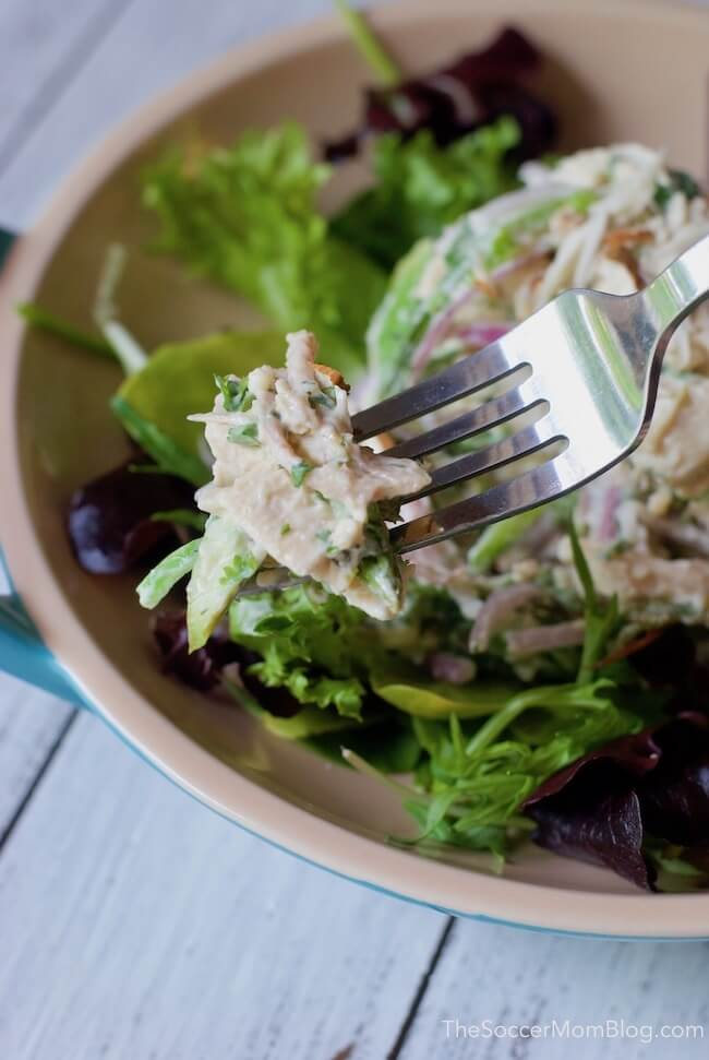 close up of chicken salad on a fork