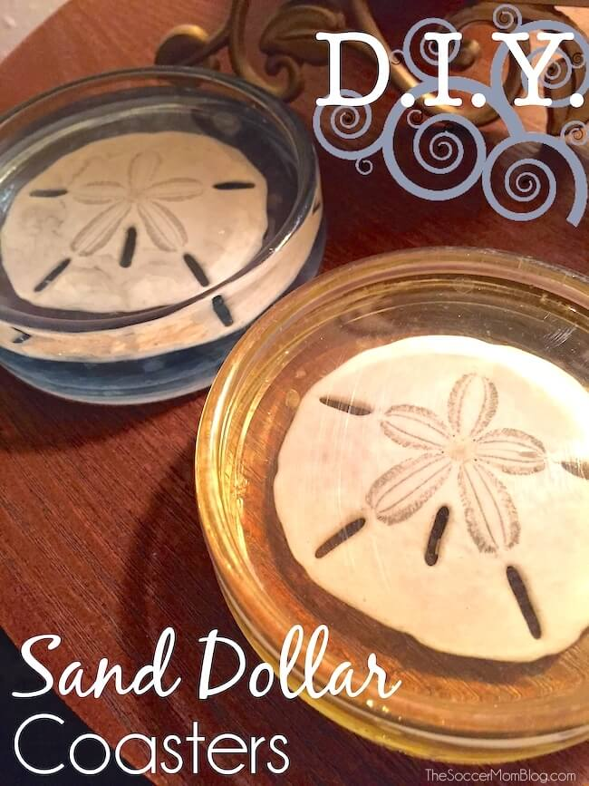 Bring the beach home with these gorgeous Sand Dollar Resin Coasters!