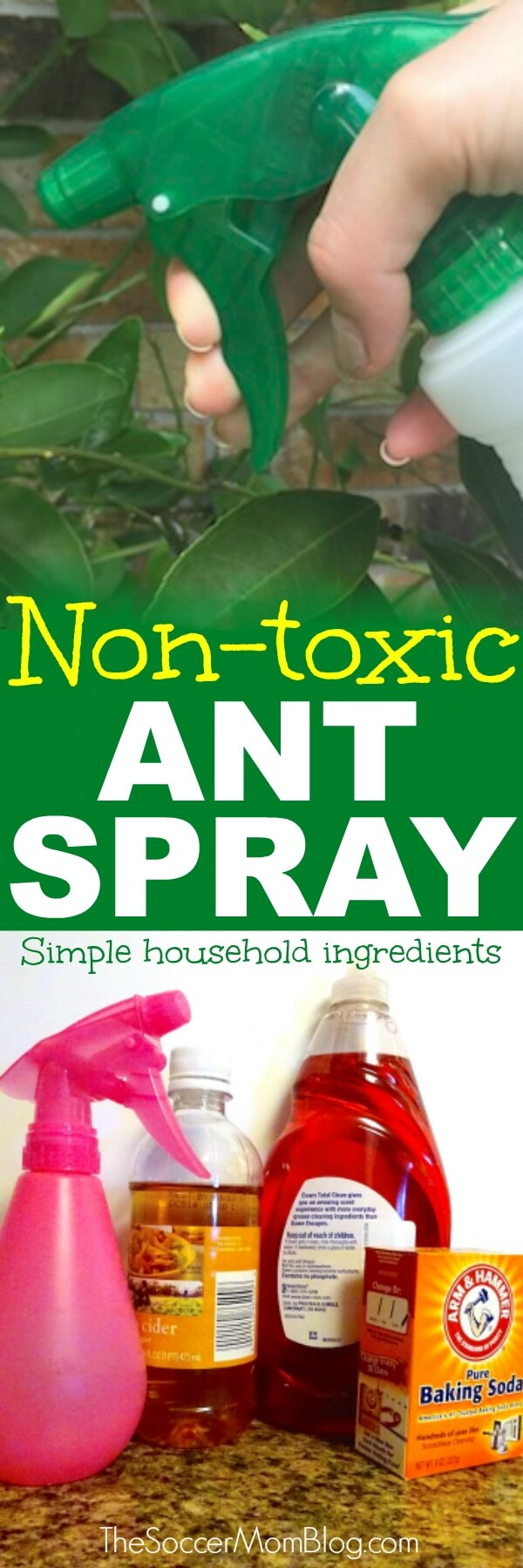 Forget harsh chemicals! This DIY natural ant killer is safe, easy, cheap, and IT WORKS! Safe for use around children and pets.
