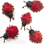 Fruit Ladybugs & Tips to Get Your Kids to Eat More Fruit