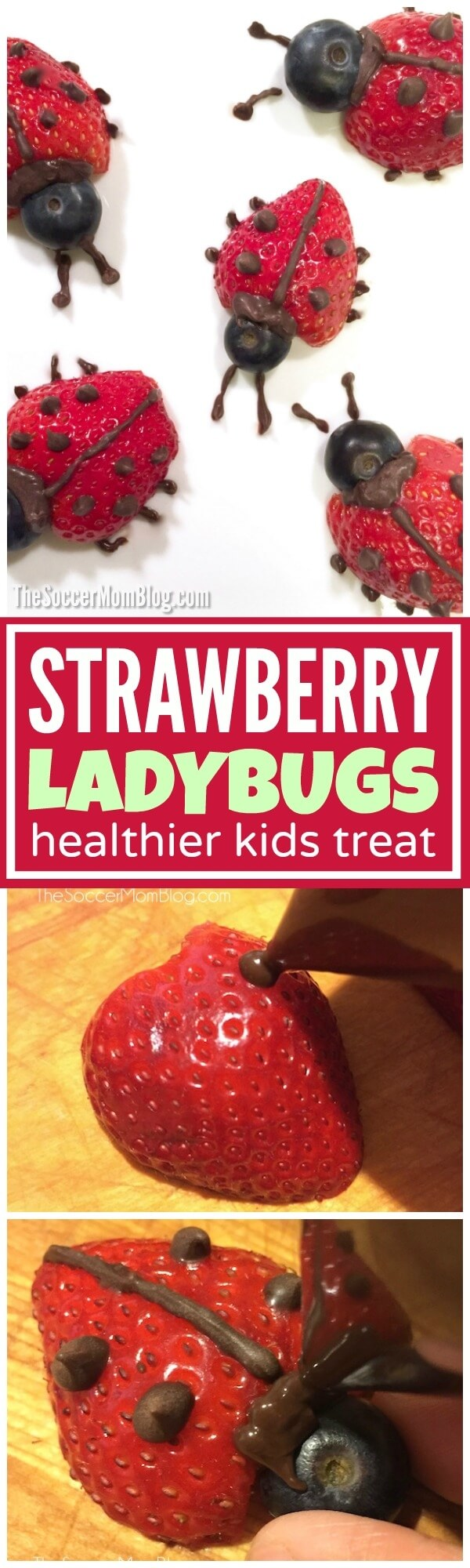 These easy strawberry ladybugs make eating fruit fun! A healthy after school snack or Valentine's dessert for kids that they will love to eat!