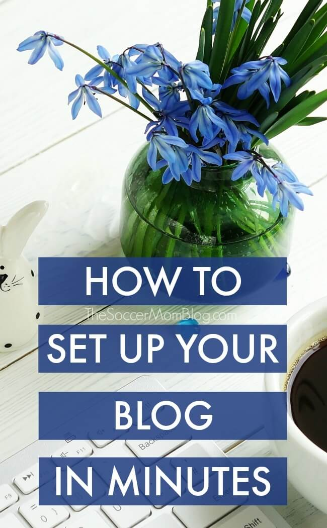 """Step-by-step guide to set up WordPress blog FAST! Topics include: web hosting, customizing your site, writing your first post & bonus """"secrets"""""""