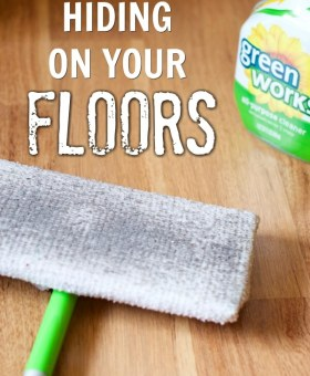 Bacteria on the Floor: Just How Dirty is your Home?