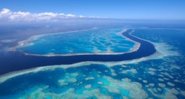 Coal terminal threatens Great Barrier Reef