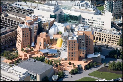 The Stata Center at MIT, designed by Frank Gehry