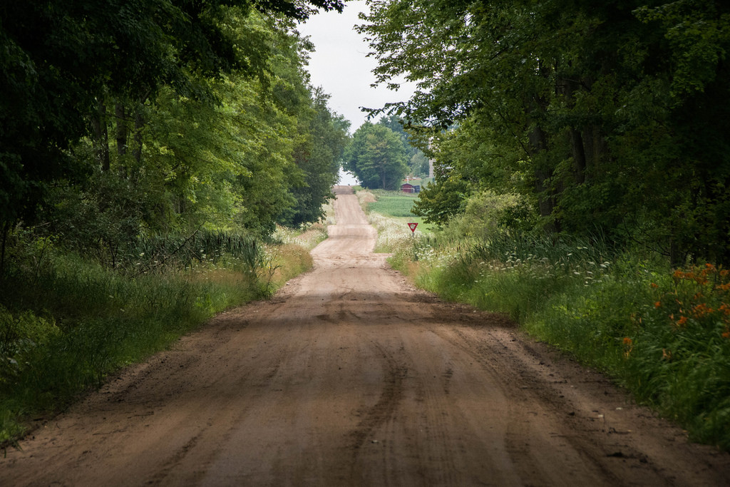 misty-shaded-dirt-road