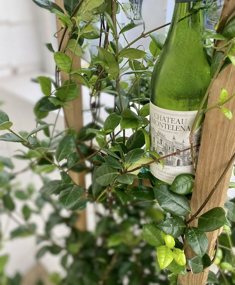 Intro to Napa Chardonnay: Chateau Montelena
