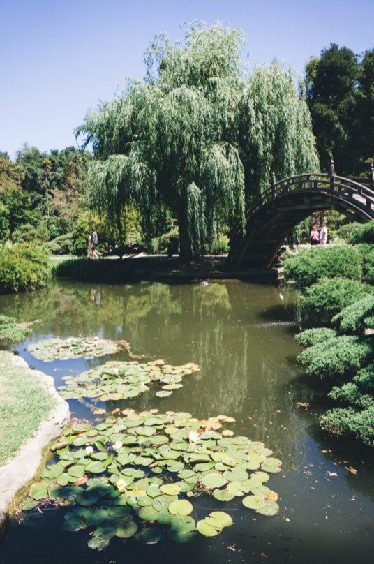 Huntington Gardens_PR.JPG-11