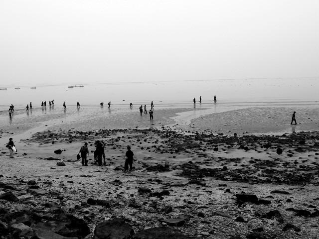 people on the coast