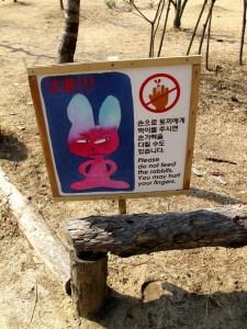 Chuncheon, Korea: Nami Island