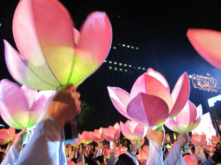 Lotus Lantern Festival Finale