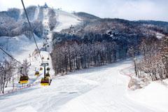 Pheonix Park Skiing