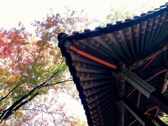 Seoul, Korea: Changdeok Palce The Secret Garden