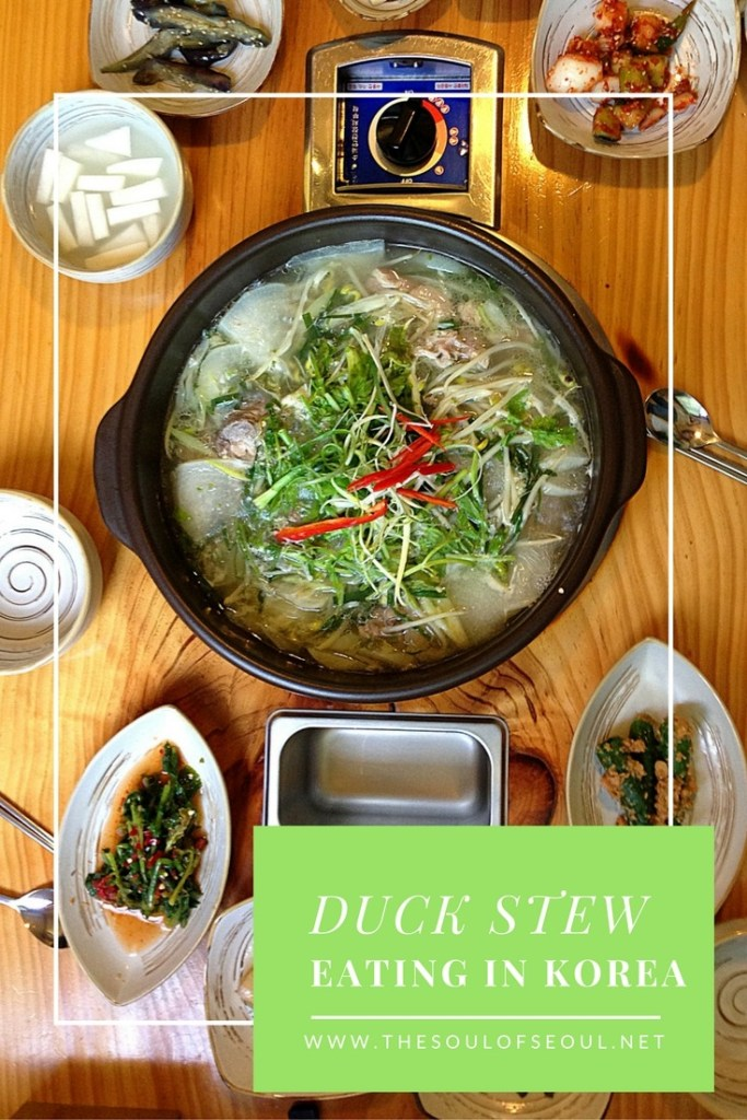 Duck Stew, Oritang, Oritang is a clear Korean soup made by slowly simmering duck with other vegetables, chili pepper may be added to make it spicier in some regions. What to eat when you visit Korea.