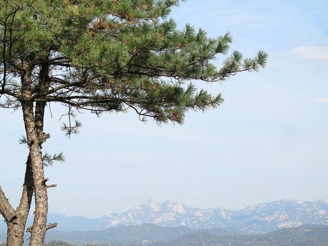 Goyang, Korea: Haengjusanseong Fortress Wall, Deogyangsan Mountain