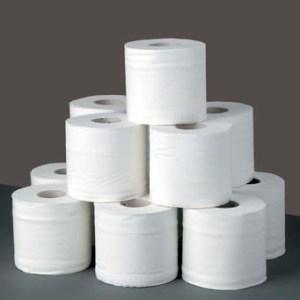 Photo from toiletpaperworld.com