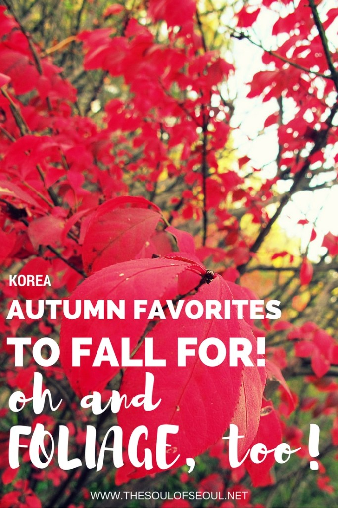Autumn Favorites To Fall For... oh And Foliage, Too! From mountain peaks to secret gardens and lanterns on the Cheonggyecheon Stream, there are numerous ways to enjoy autumn in Korea.