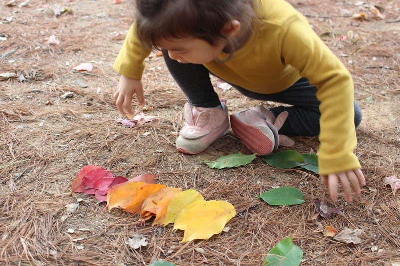 Nanji Stream Park, Mapo-gu, Seoul, Korea: baby & fall leaves