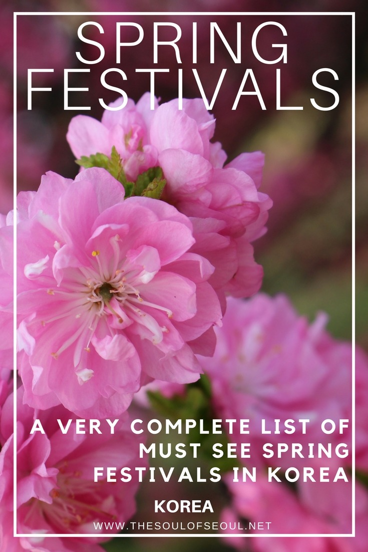 A Very Complete List Of Must See Spring Festivals In Korea
