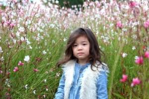 Nari Park, Yangju, Korea: Autumn Flowers