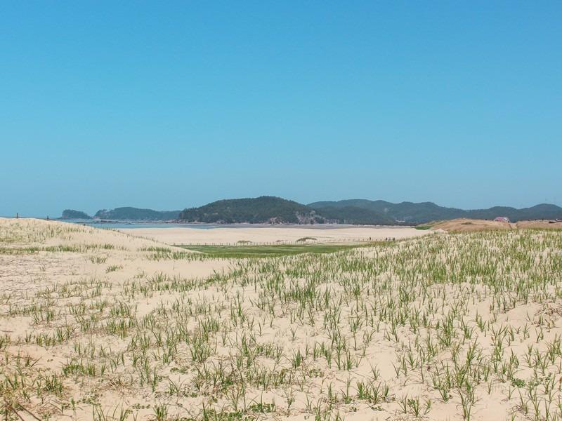 Sinduri Beach & Sand Dunes, Taean, Korea