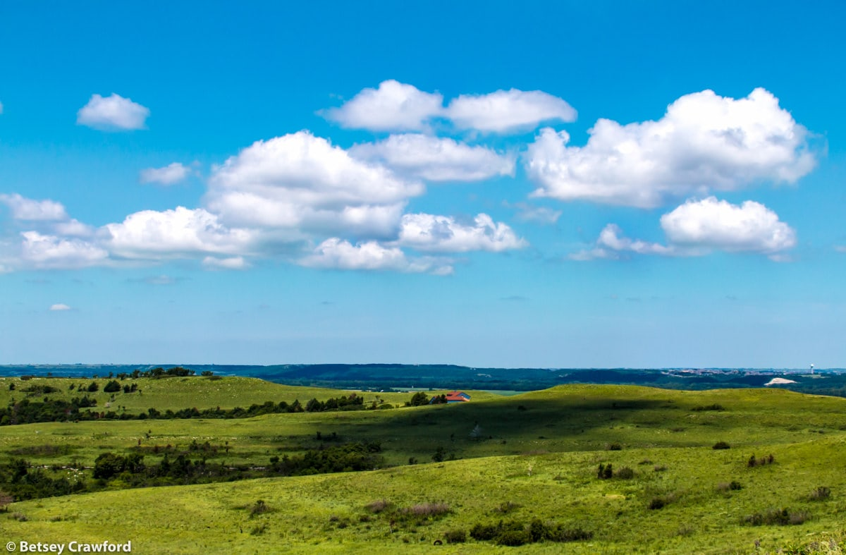 The Flint Hills Tallgrass Prairie
