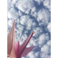 Día 160 - Y ahora viajaría con mi mente a la lejanía, ¡mira!, he levantado el vuelo, estoy en una nube encima de tus sueños.