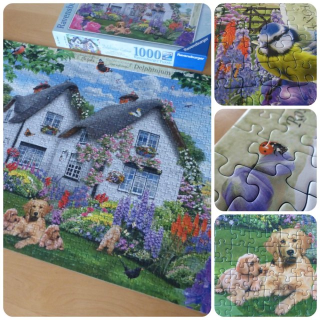 delphinium cottage ravensburger