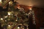 Christmas Photos, Christmas Decorating, South Dakota Cowgirl Decorating