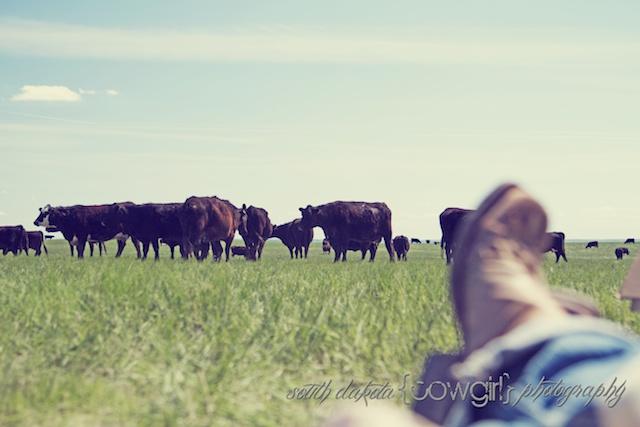 south dakota cowgirl, south dakota cowgirl photography, ranch life photography, ranch branding